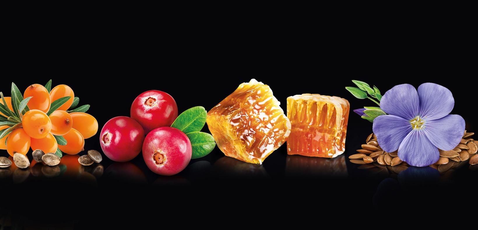 продуктовое демо вкусы крем-меда Ascania