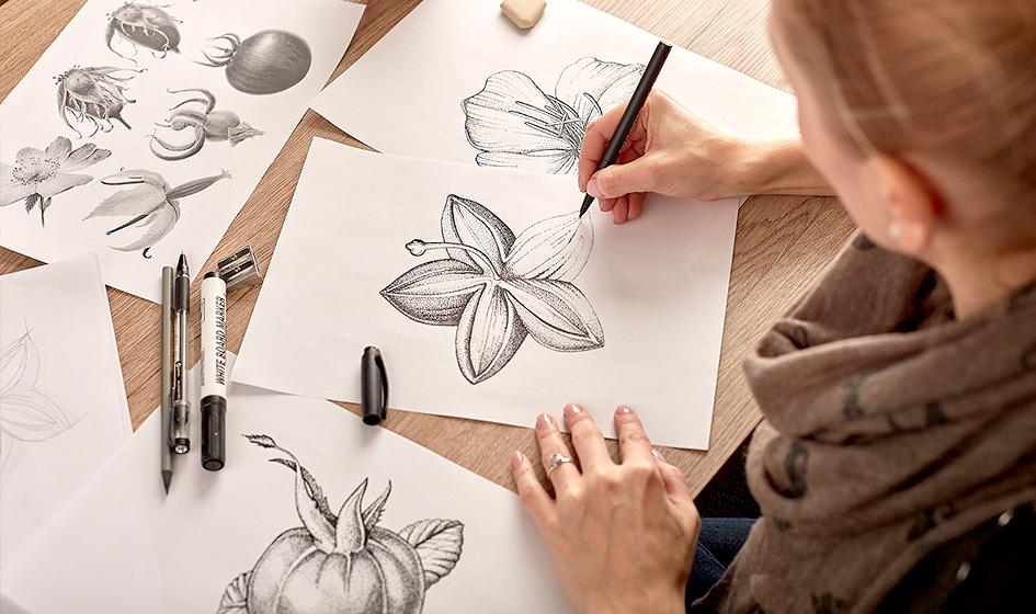 Organic Harmony разработка иллюстрации